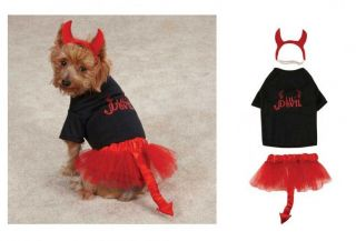 Devil Costumes for Dogs   Halloween Dog Costume   Lil Angels & Devils